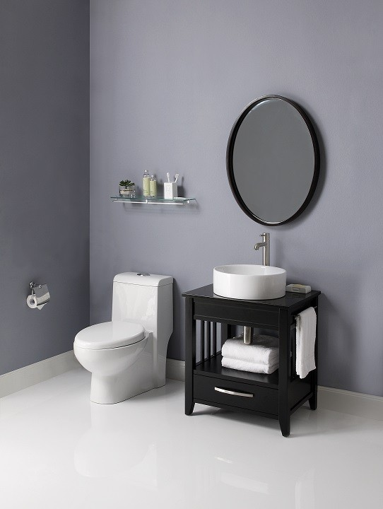 Ambrosia<sup>™</sup> 24-Inch Bathroom Vanity & Black Granite Countertop